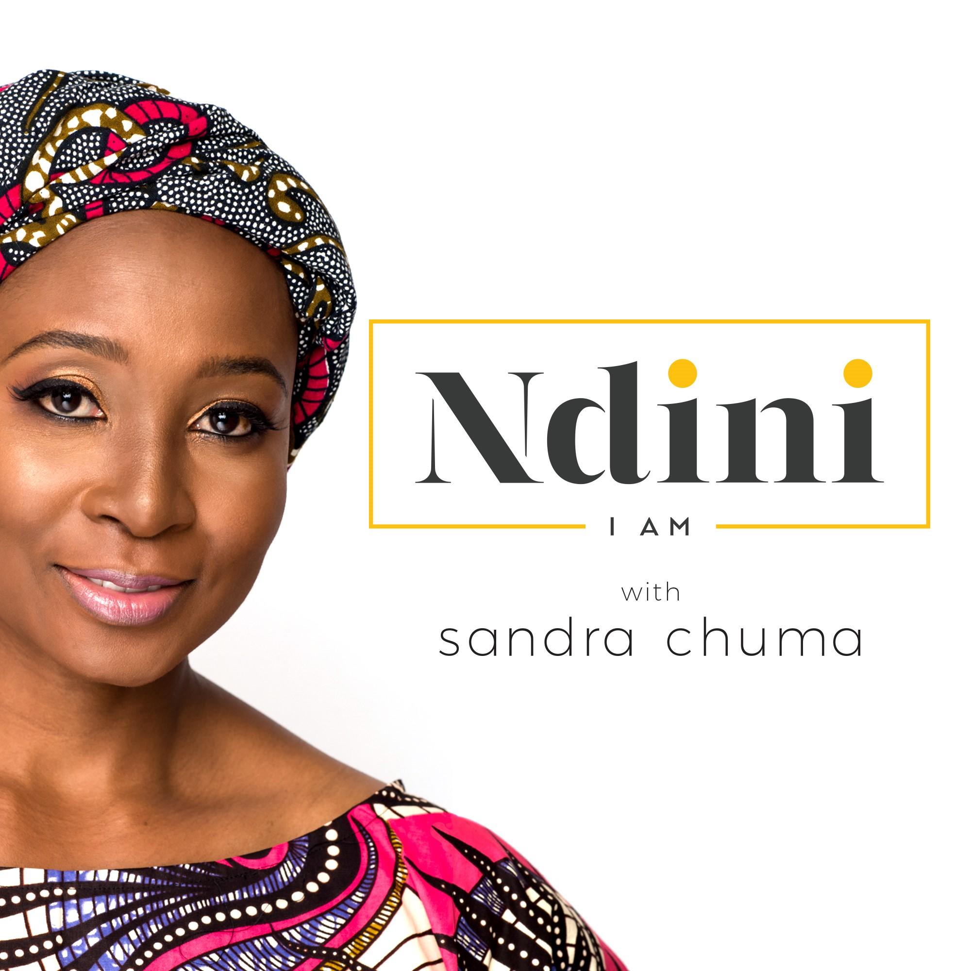 The NDINI Podcast show art