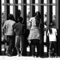 Artwork for CD179: Hearing: Who's Tracking the Immigrant Kids?
