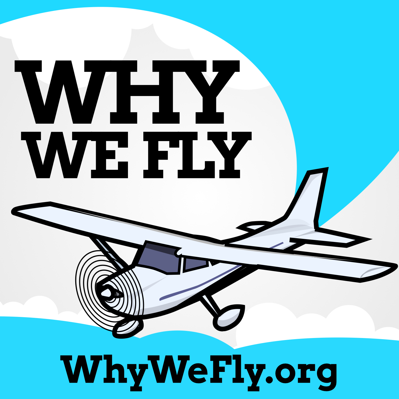 Why We Fly show art