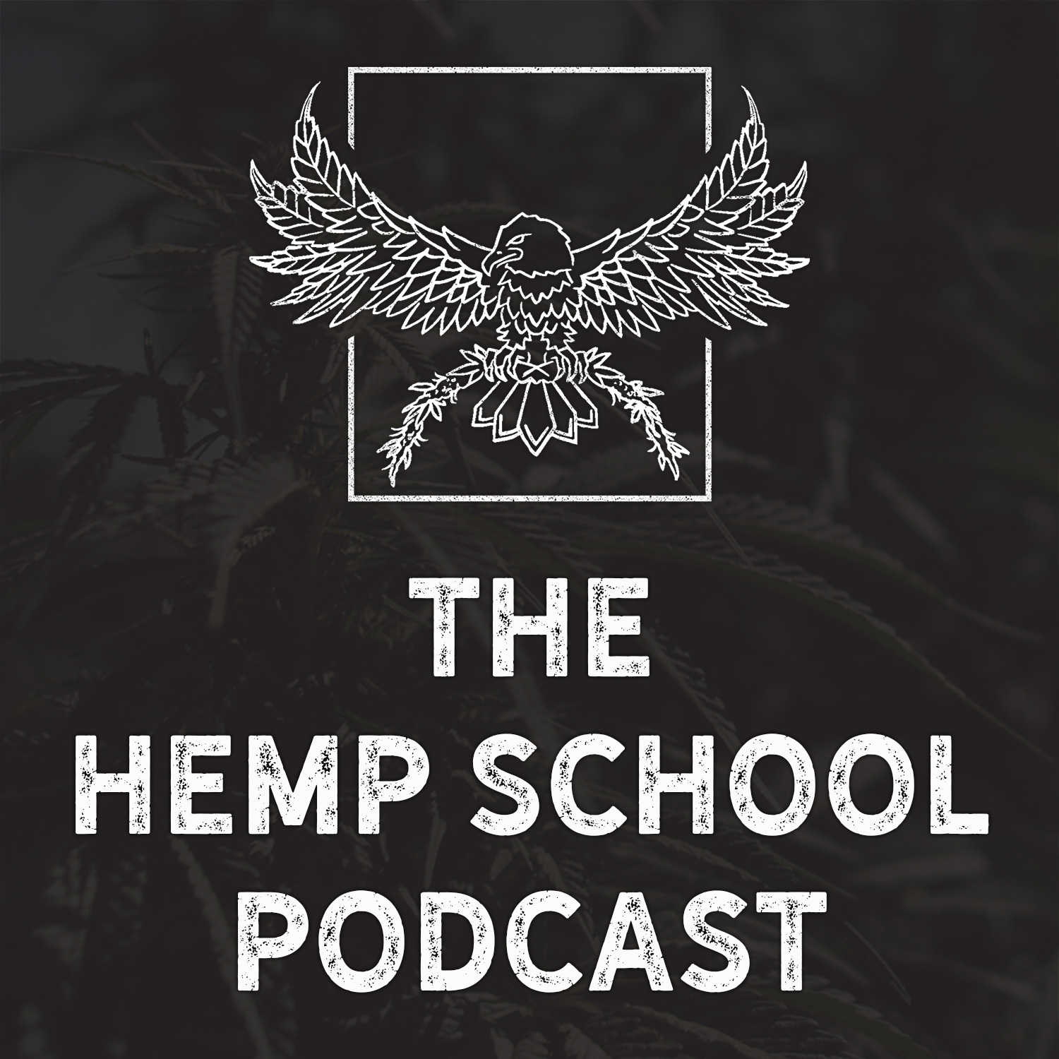 The Hemp School Podcast show art