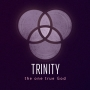 Artwork for Trinity: The One True God - 'Trinity means we can be Saved'