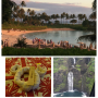 Artwork for 121 Hawaii - Maui and Oahu and Disney's Aulani Trip Resort