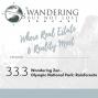 Artwork for Episode 33.3:  Wandering Zen - Wandering Olympic National Park ~ The Rainforests