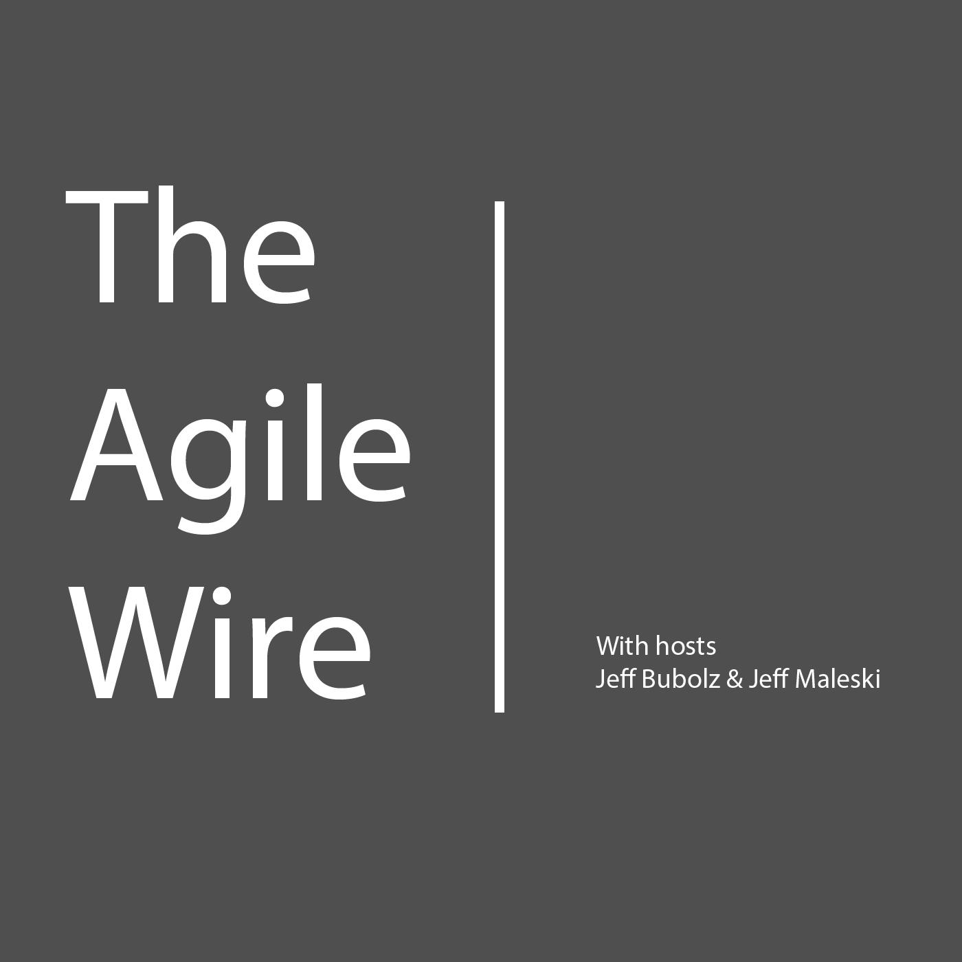 The Agile Wire show art