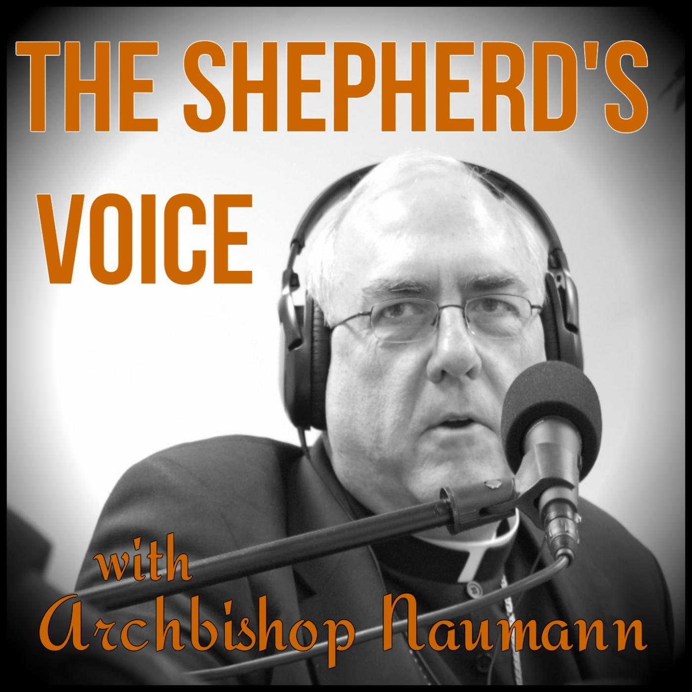The Shepherd's Voice show art