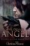 Artwork for Christine Alvarez: Beyond Blood, Book 1: The Devil's Angel