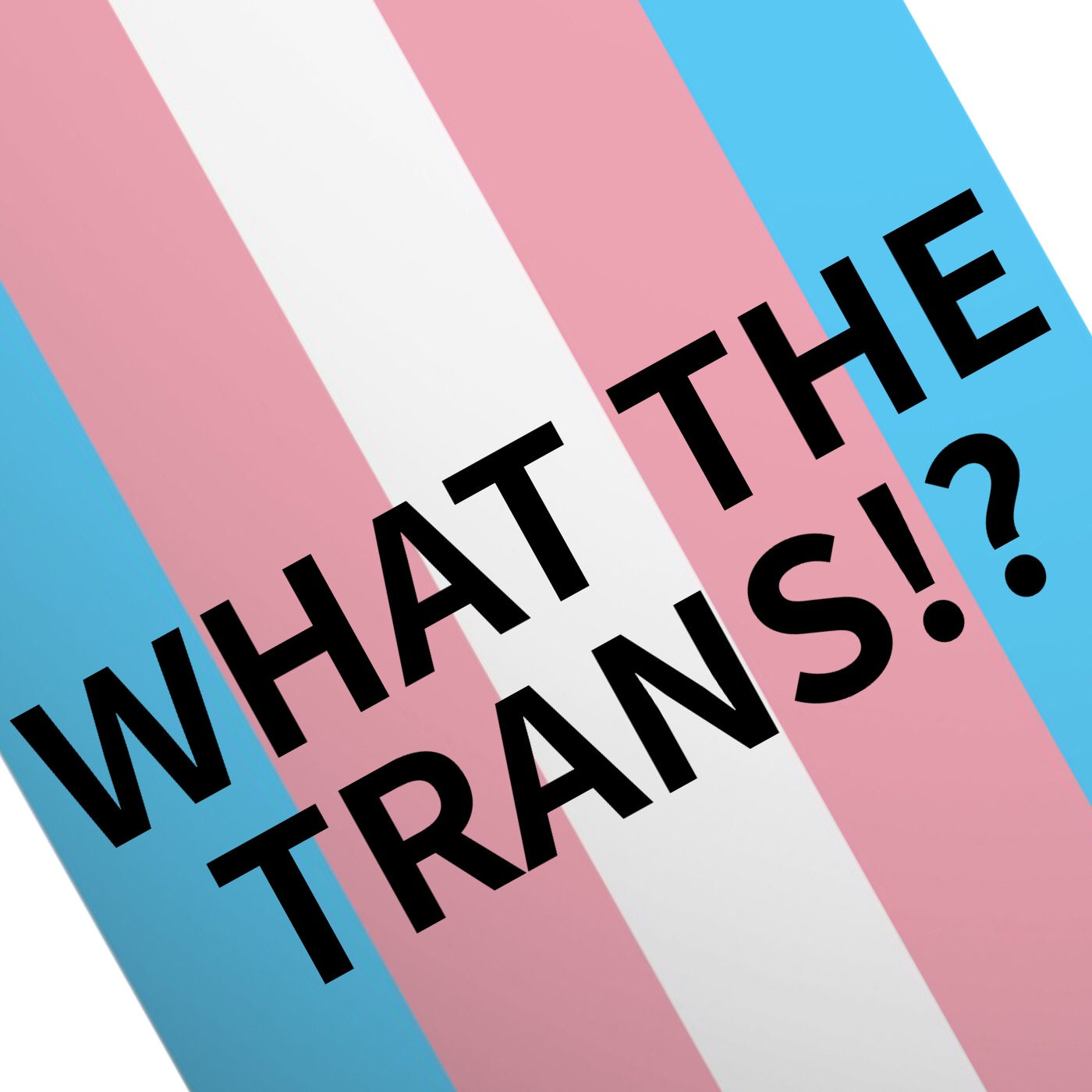 What The Trans!? show art