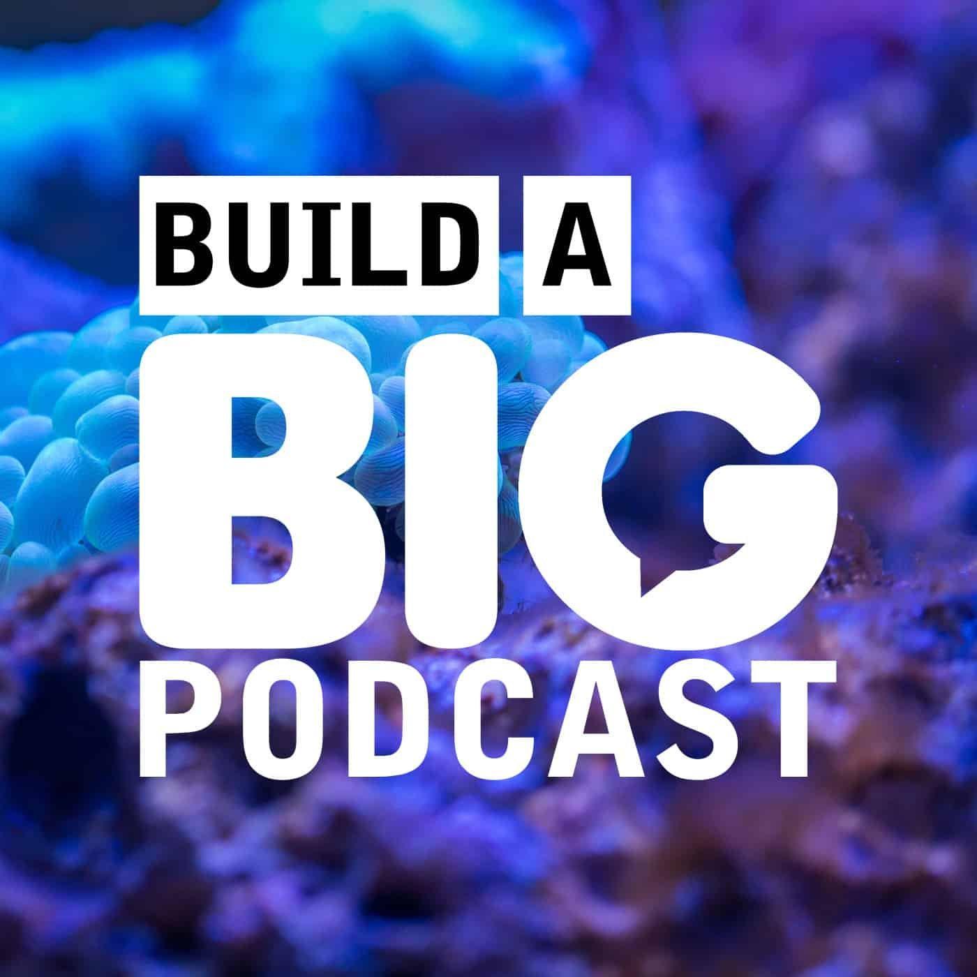 Artwork for Podcast Audio vs. Audiobook Audio