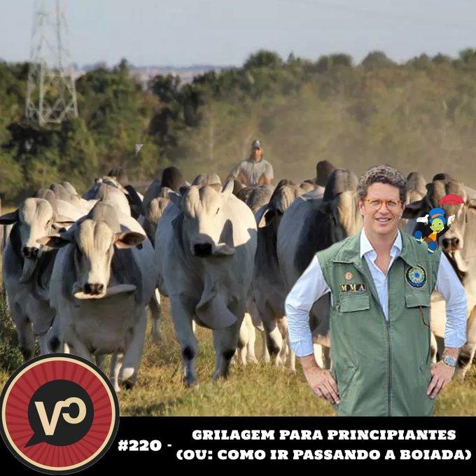 """#220 """"Grilagem para Principantes (ou: como ir passando a boiada)"""" - com Maurício Torres"""
