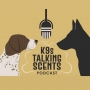 Artwork for Season 2 Episode 30: The Great Podcast Mashup