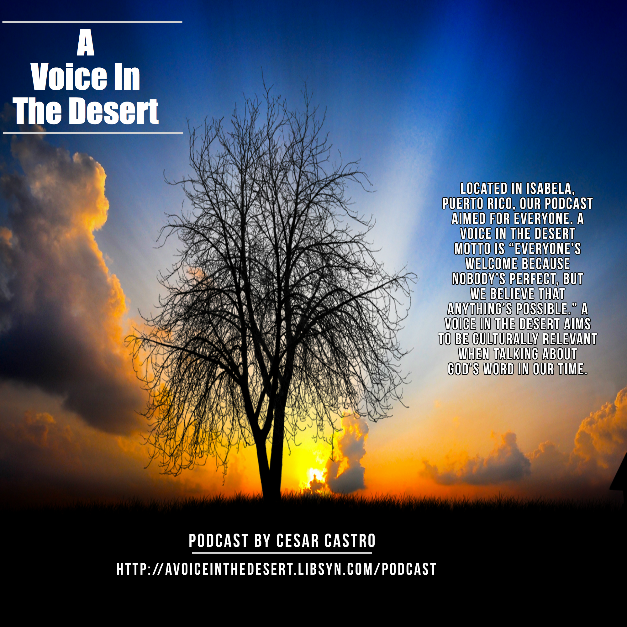 A Voice in The Desert Logo