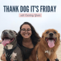 Artwork for 3 Simple Ways To Have A Better Day With Your Dog