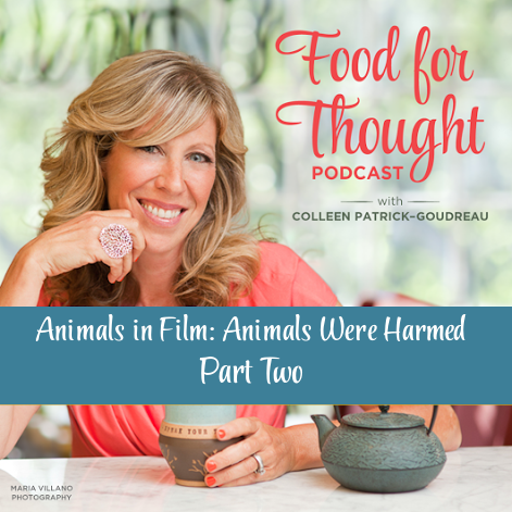Animals in Film Part Two: Animals Were Harmed