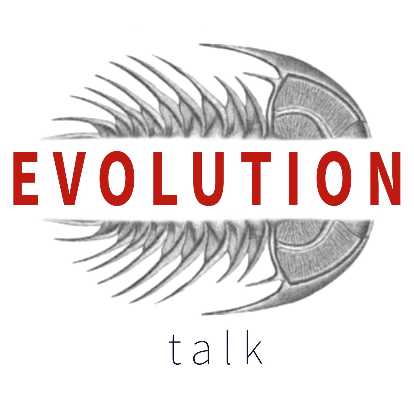 Artwork for Misconceptions About Evolution & Natural Selection