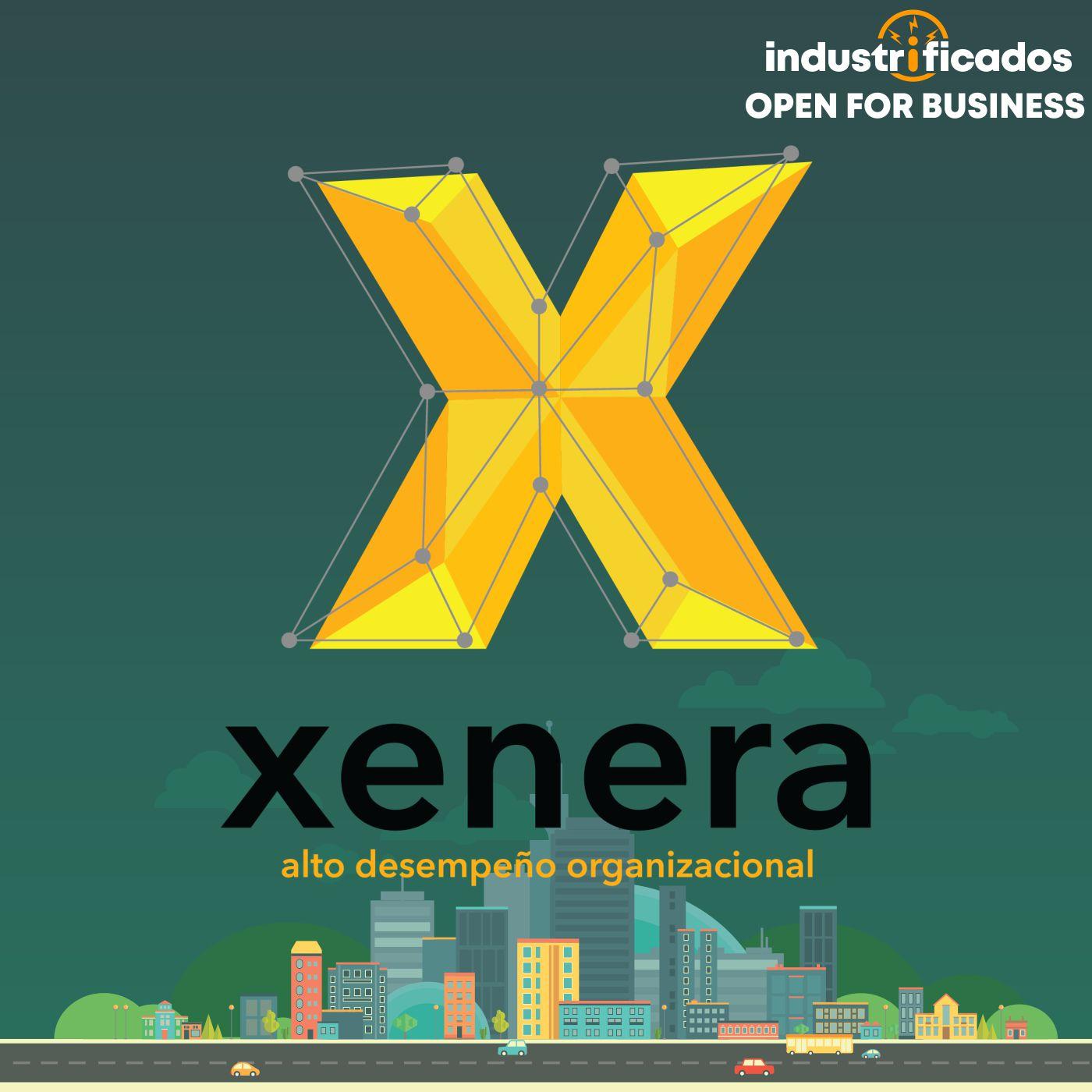 Alto desempeño organizacional | Xenera | Open for Business 02