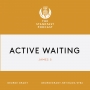 Artwork for Active Waiting (James 5)
