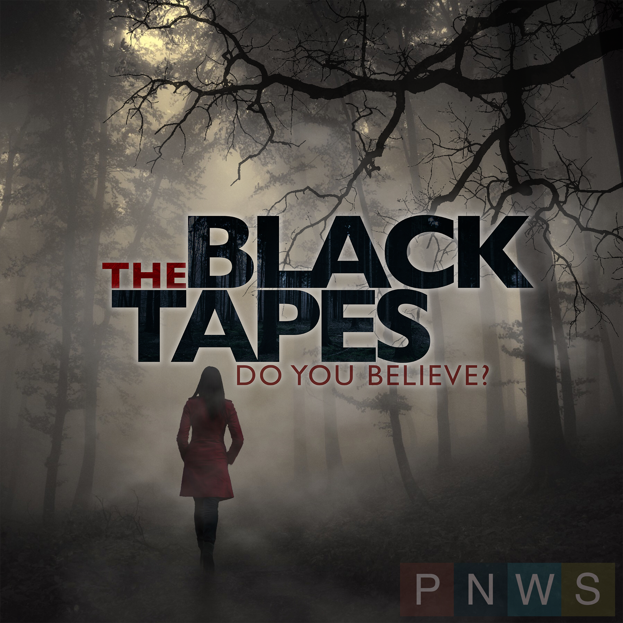 """    The Black Tapes "" Podcast"
