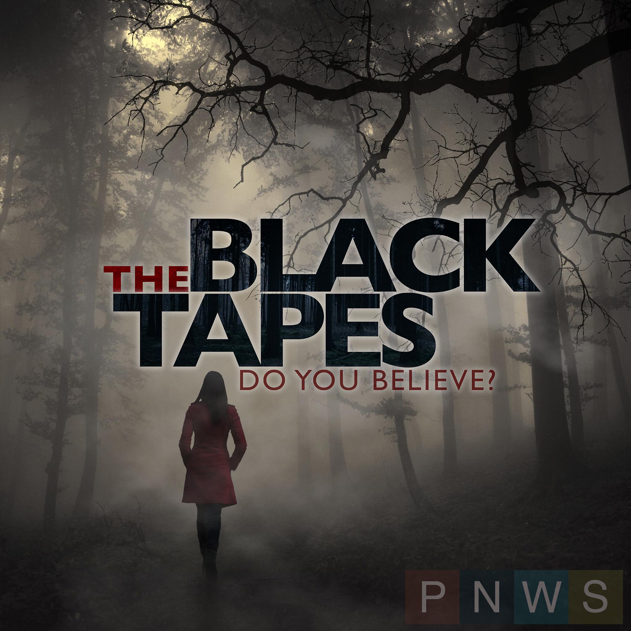 The Black Tapes  logo