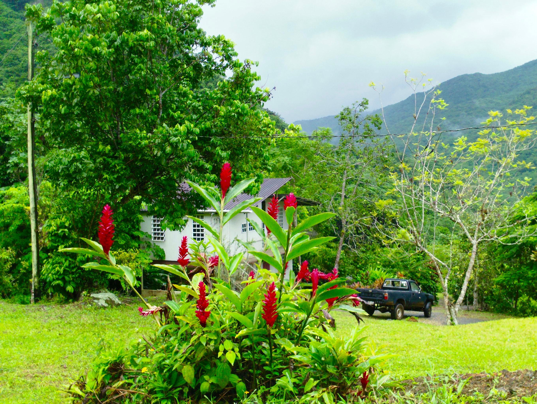 Casa de campo en una finca del barrio Ala de Piedra en Orocovis, Puerto Rico