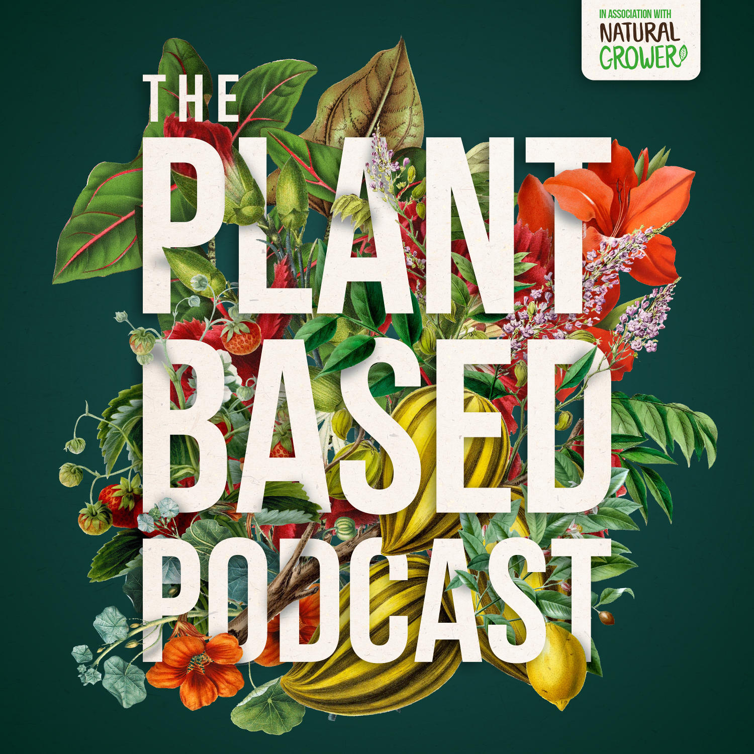 Artwork for The Plant Based Podcast S3 Episode One - Wellbeing with the wonderful Liz Earle