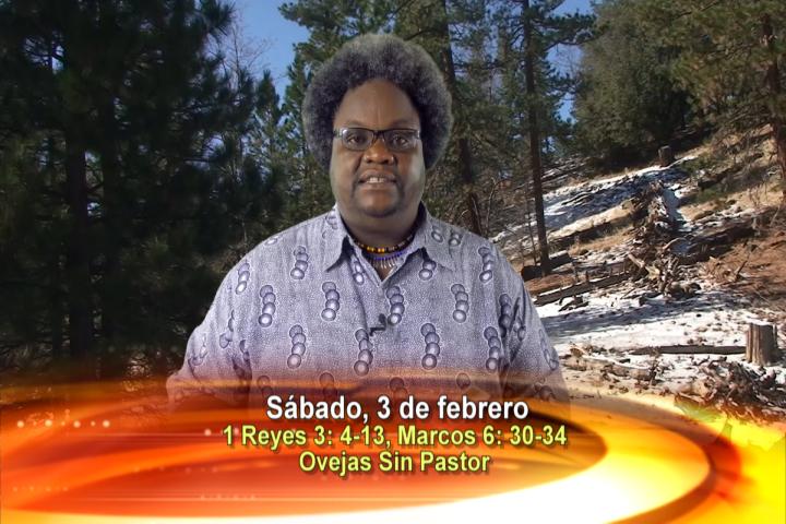Artwork for Dios te Habla con  Emigdio Cuesta Pino, SVD  Tema el hoy: Ovejas sin Pastor