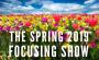 Artwork for Episode 217: The Spring Focusing Show