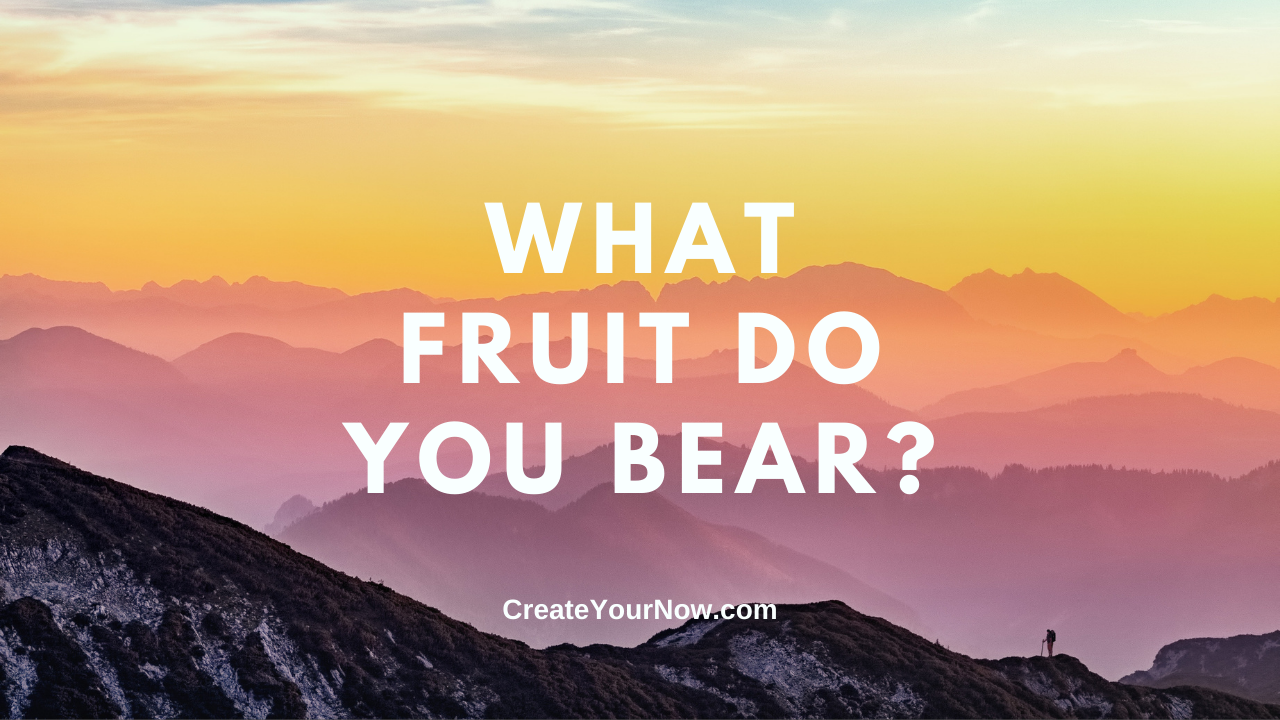 2438 What Fruit Do You Bear? show art