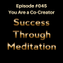 Artwork for Episode #045 - You Are a Co-Creator