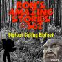 Artwork for RAS #362 - Bigfoot Calling Bigfoot