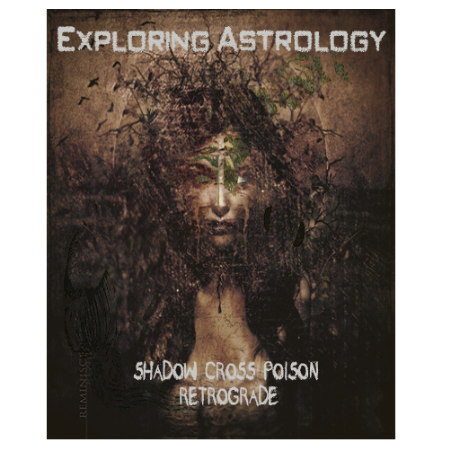 Exploring Astrology: Enter the Dragon