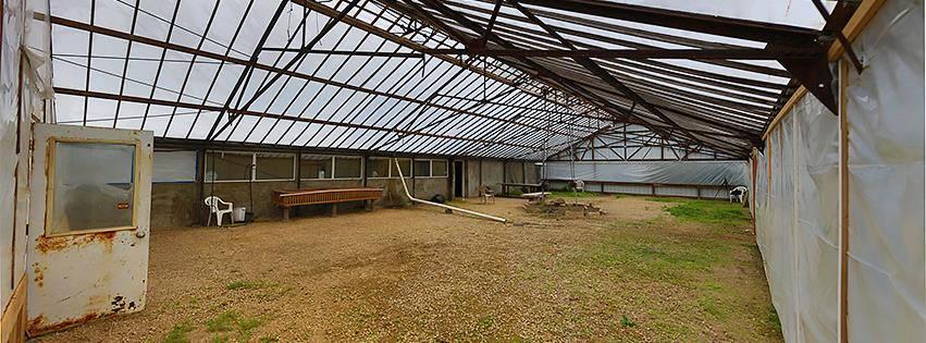 Convivium Greenhouse