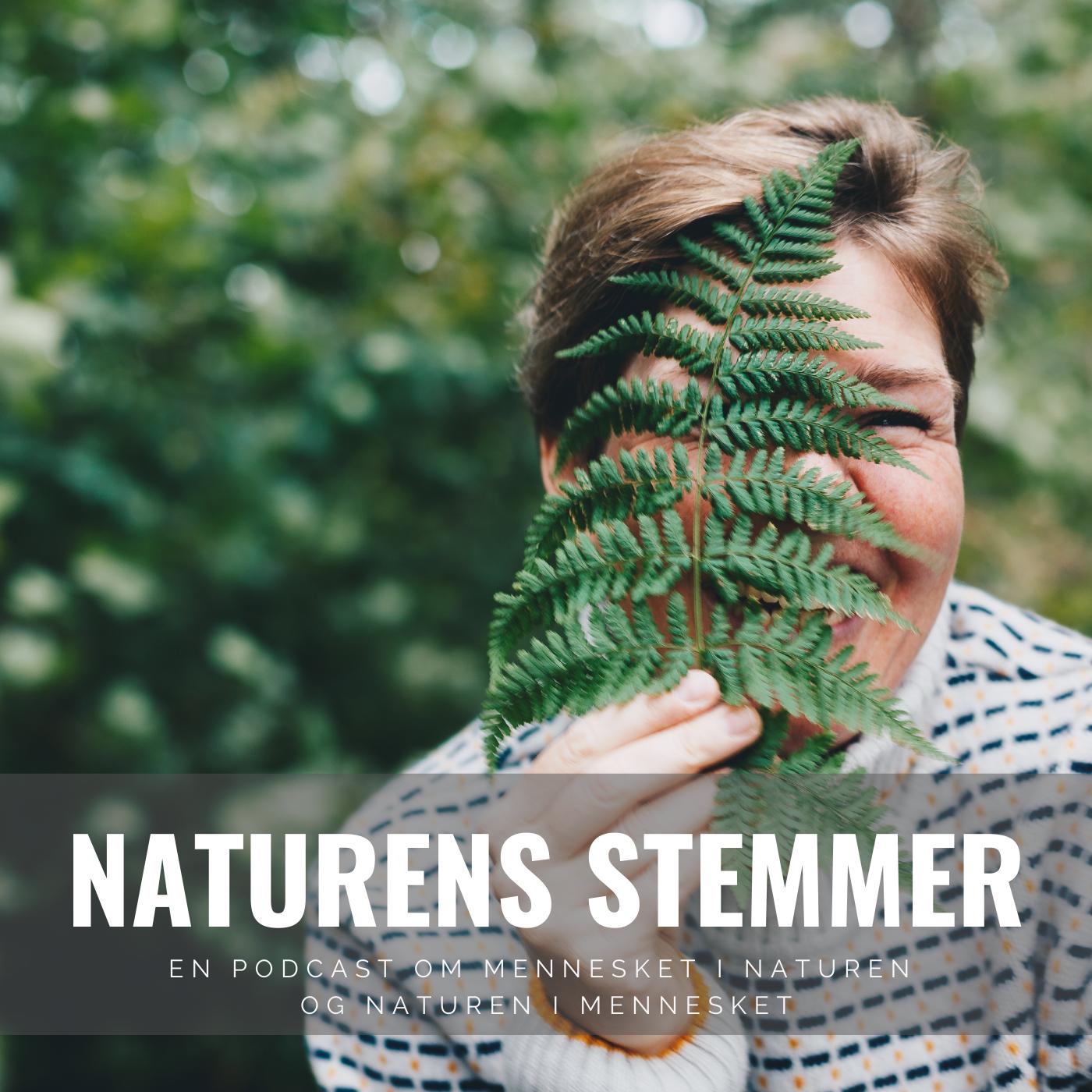 Velkommen til Naturens Stemmer - sæson 2