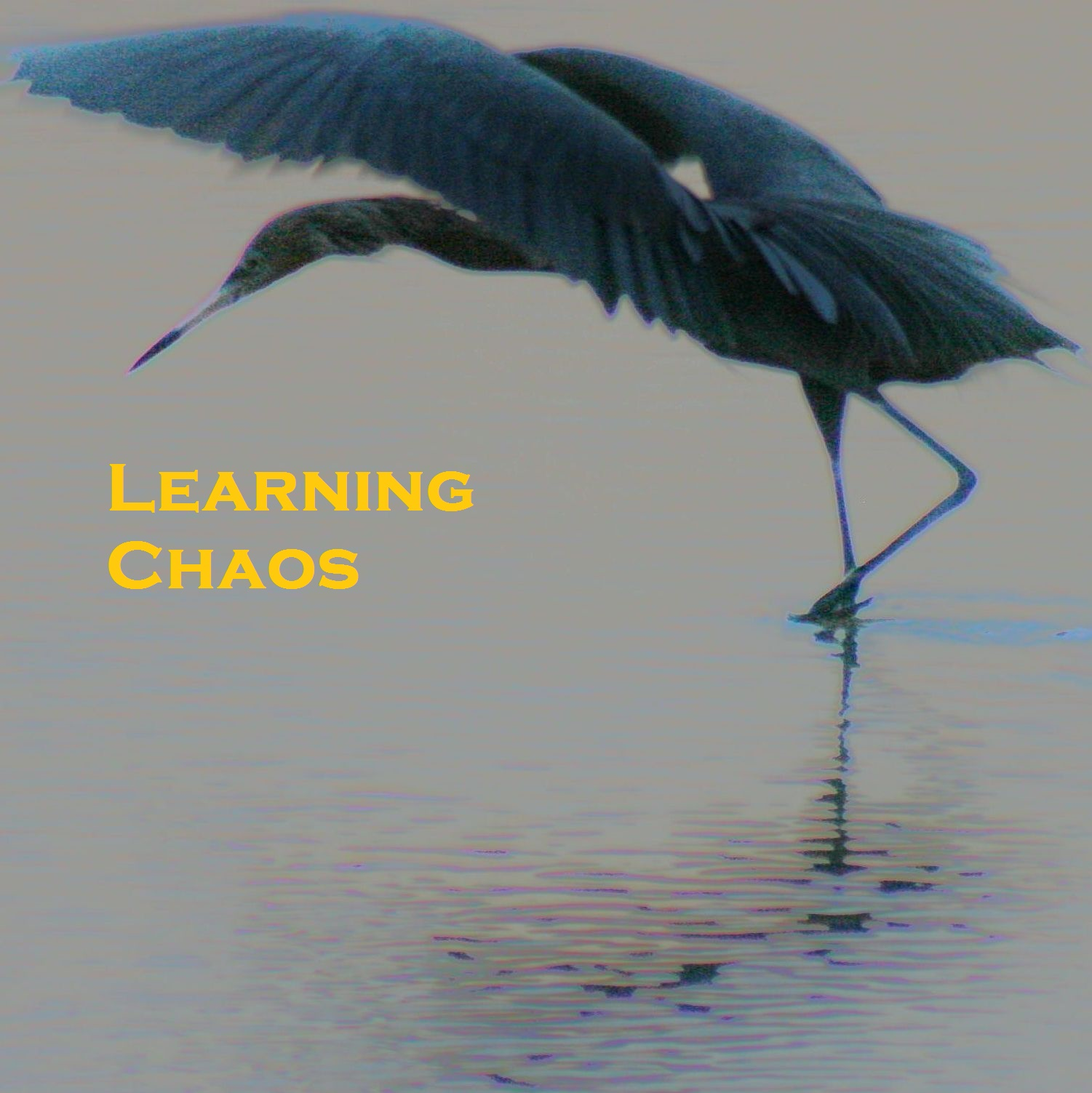 Learning Chaos