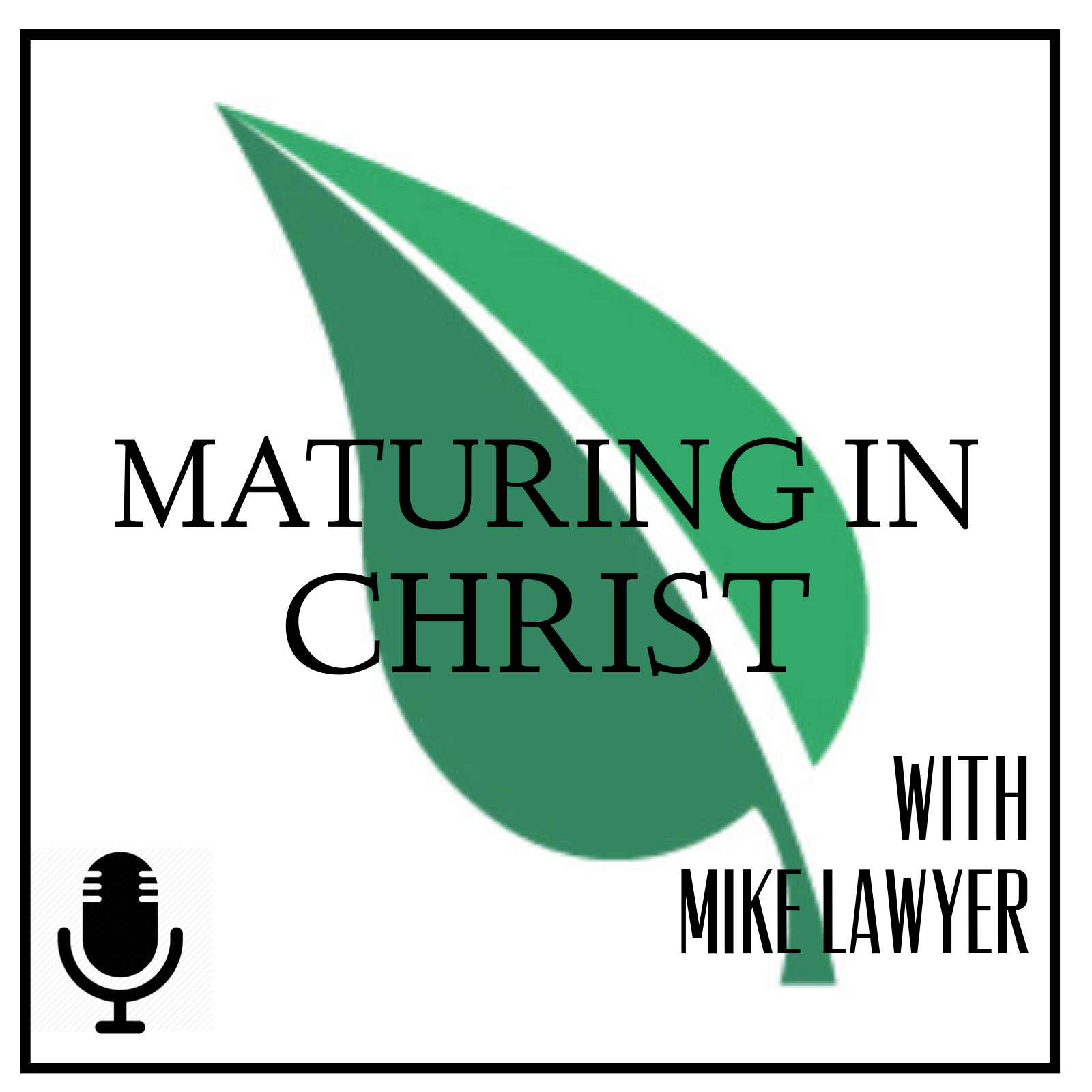 Artwork for Maturing in Christ Episode 40