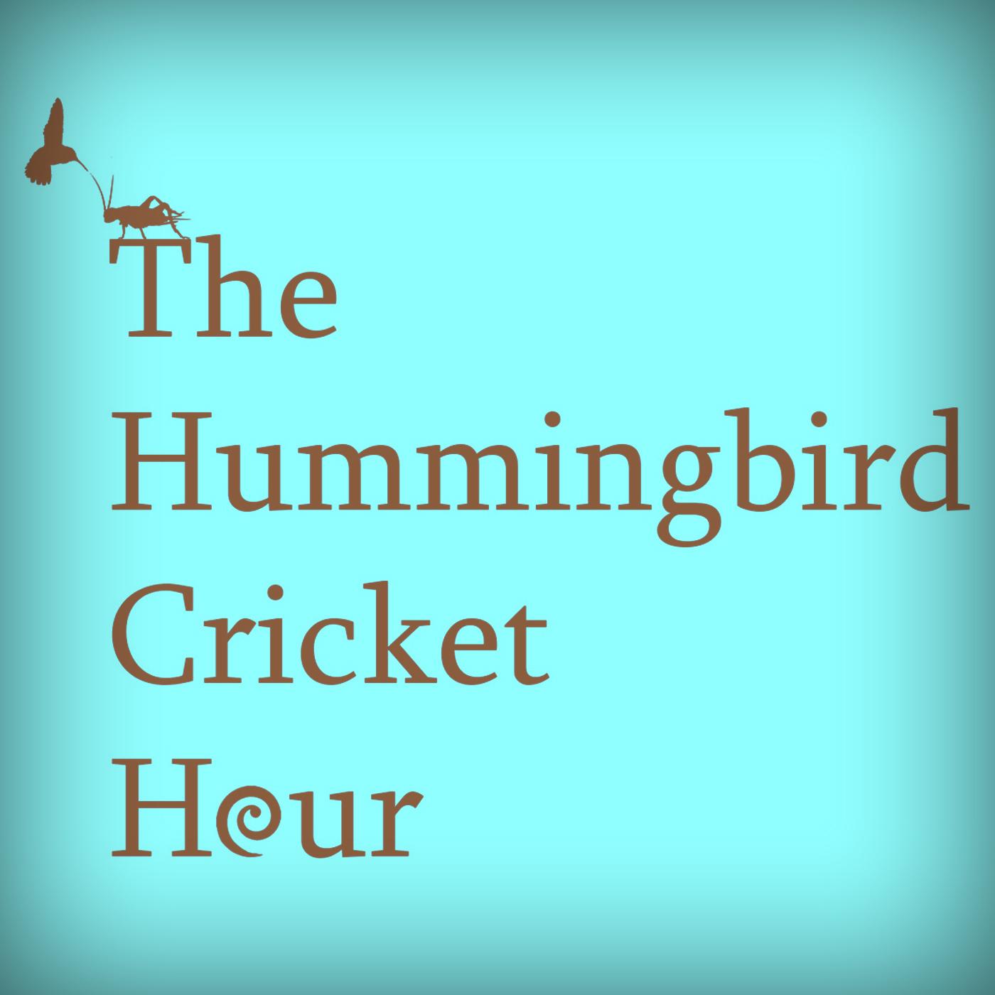 Hummingbird Cricket Hour show art