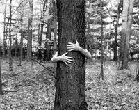 Medio ambiente y ecologismo: Conversacion en ingles