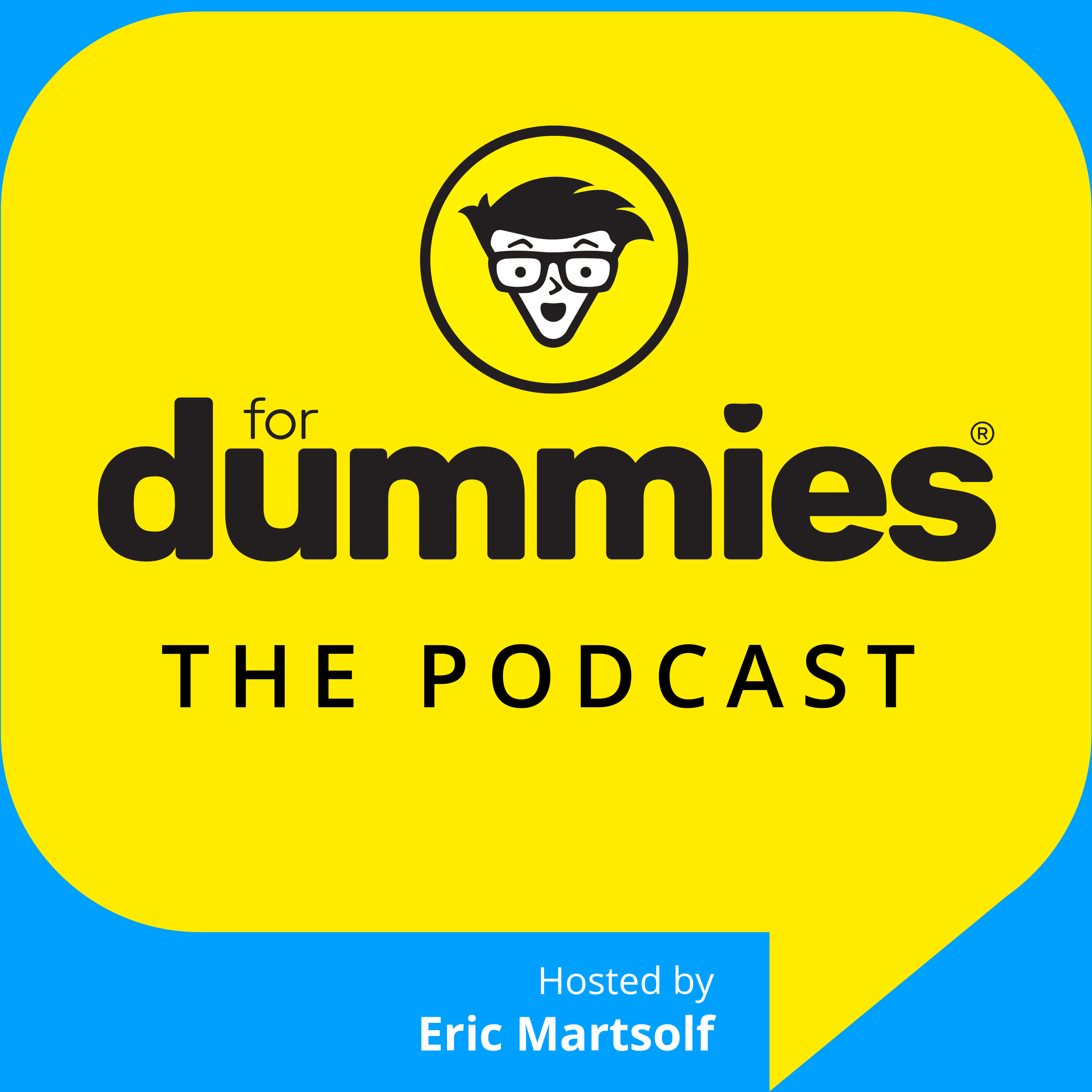 FOR DUMMIES: The Podcast show art