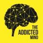 Artwork for 39: Understanding What Works - Feedback Informed Treatment with Scott D Miller