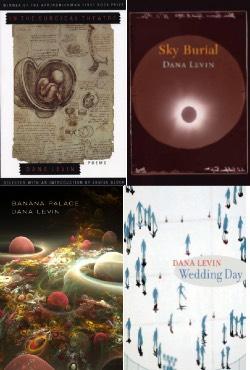 Levin Books