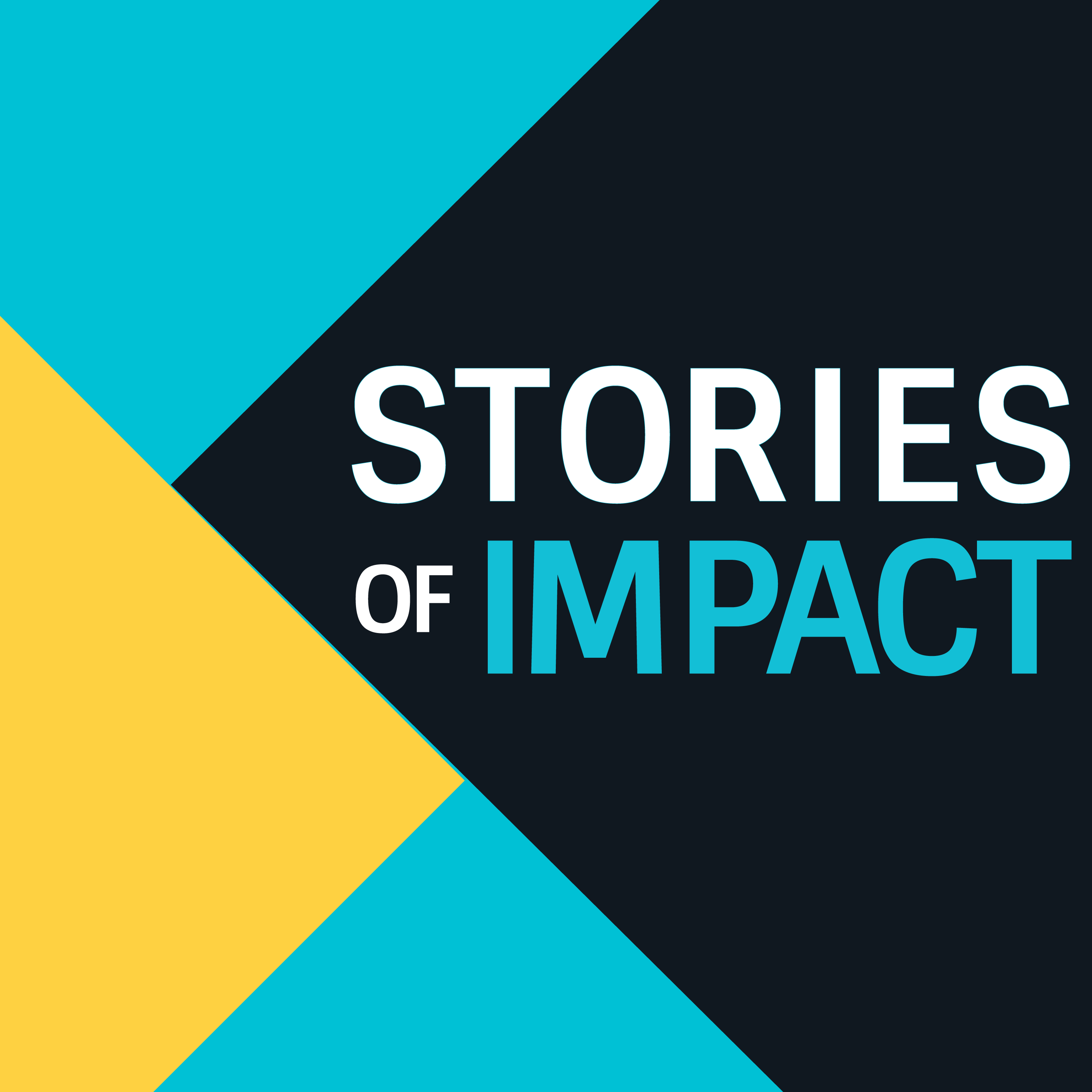 Stories of Impact show art