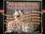 """Artwork for Porpoise Crispy Podcast Volume 8 Number 6 """"Zoloft"""""""