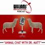 Artwork for Animal Chat 12-7-18