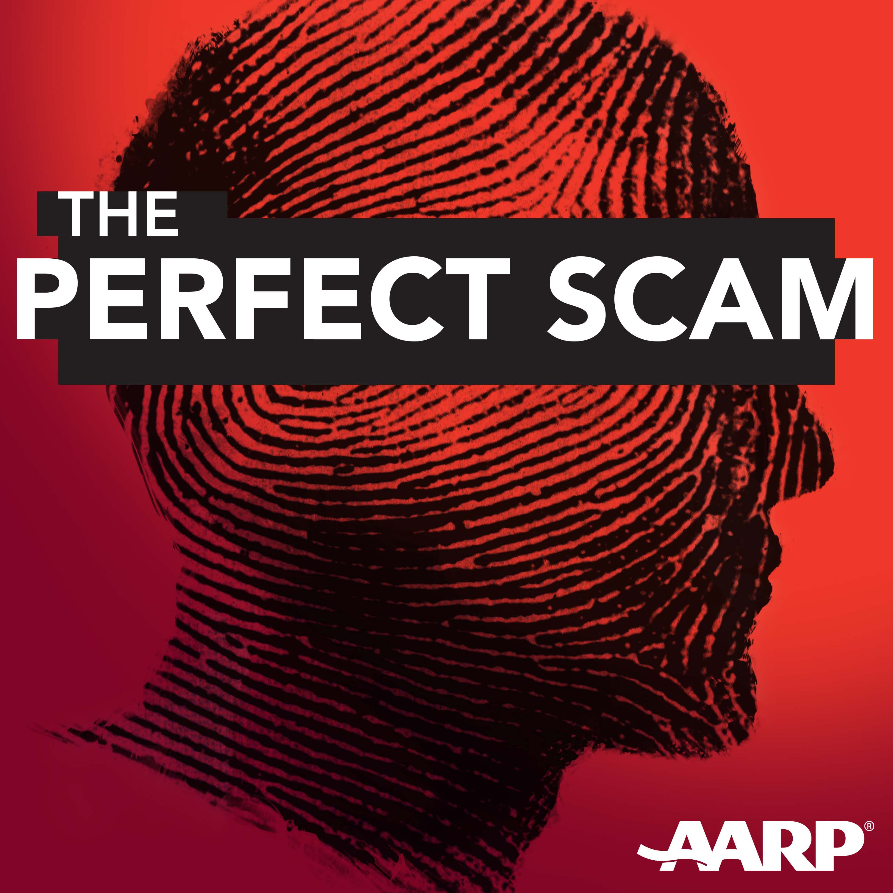 The Perfect Scam show art