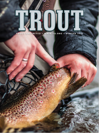 The cover of the winter 2018 issue of Trout Magazine features a brown trout.