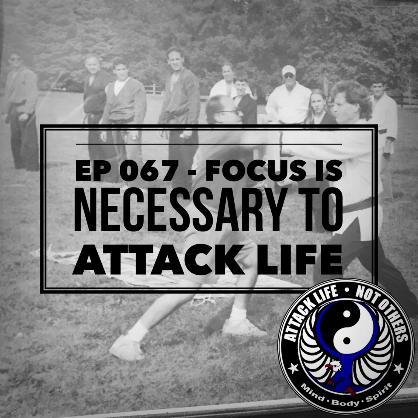 Artwork for Ep 067 - Focus is Necessary to Attack Life