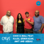 Artwork for Ep. 377: Cock & Bull feat. Kajol Srinivasan, Amit and Abbas