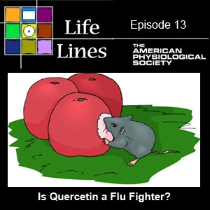 Episode 13: Is Quercetin a Flu Fighter?