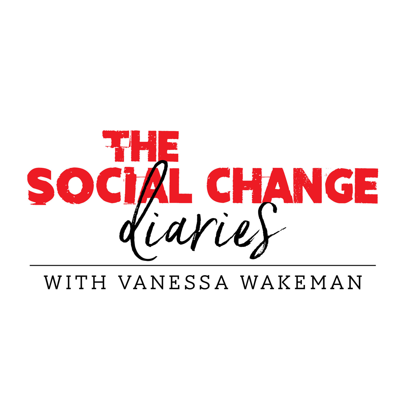 The Social Change Diaries show art