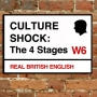 Artwork for 191. Culture Shock: The 4 Stages