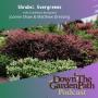 Artwork for Shrubs: Evergreens
